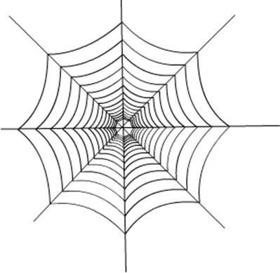 《蜘蛛网》的制作方法-flash动画教程-flash课件吧